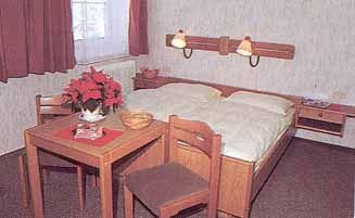 Pokoj v hotelu Krippenstein