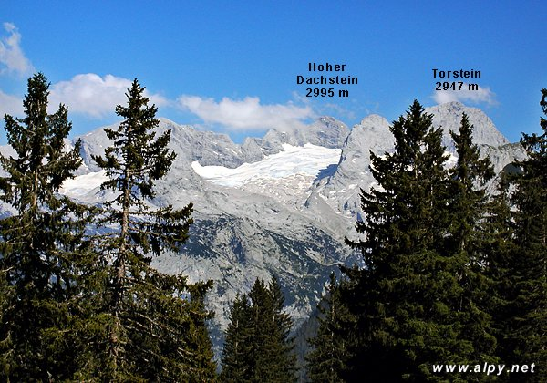 Hoher Dachstein, Torstein a ledovec Gosaugletscher